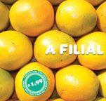A Filial's album $1,99