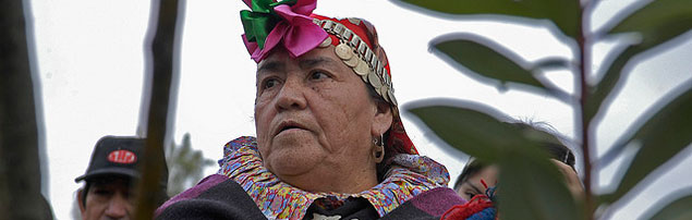 LEUFU documentary shows Chile's Mapuche standing up to defend their river