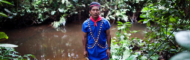 When a green heaven turns into black waters (Oil pollution in the Amazon rainforest)