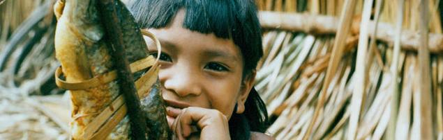 Amazon tribe in danger of losing its annual fishing ritual