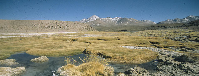 Bolivia's Mother Earth law gives nature equal rights to humans
