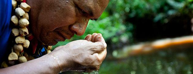 Chevron Again Claims Special Treatment Under Ecuadorian Law