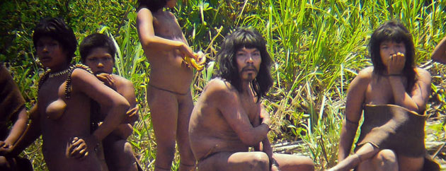 Illegal Logging Site Seized Just Days After Photos of Uncontacted Indians Released