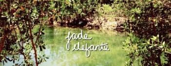 jade-elefante