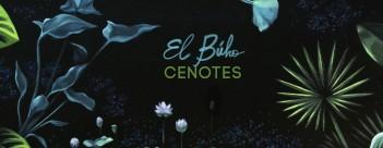 Cenotes_CD_RetocadoHIRES